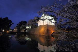 新発田城の桜ライトアップの写真素材 [FYI04074538]
