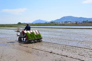 新潟の農作業風景の写真素材 [FYI04074589]