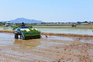 新潟の農作業風景の写真素材 [FYI04074608]