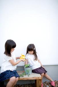 鉢植えに水を遣る女の子達の写真素材 [FYI04076749]