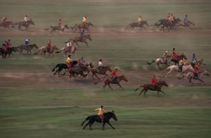 子供の競馬 ナーダム モンゴルの写真素材 [FYI04076960]