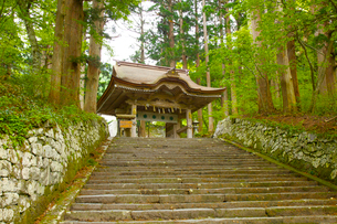 大山、大神山神社、後向き門の写真素材 [FYI04076964]