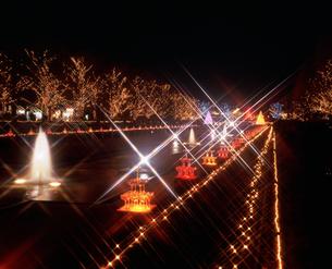 昭和記念公園ウィンタービスタイルミネーションの写真素材 [FYI04076969]