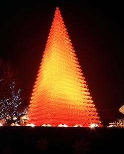 昭和記念公園ウィンタービスタシャンパンタワーの写真素材 [FYI04076970]