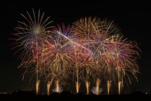 こうのす花火大会の音と光の合同スターマイン2「願いをこめて」の写真素材 [FYI04077018]