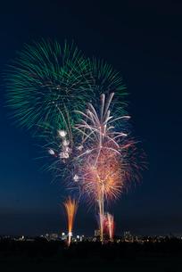 とりで利根川大花火 夏色ファンタジーの写真素材 [FYI04077034]