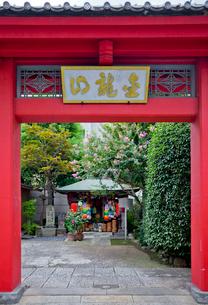 大円寺の山門とほうろく地蔵の写真素材 [FYI04077087]