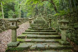 万松院の対馬藩主宗家墓所への石段の写真素材 [FYI04077124]