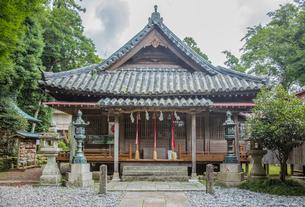 厳原八幡宮神社拝殿の写真素材 [FYI04077125]