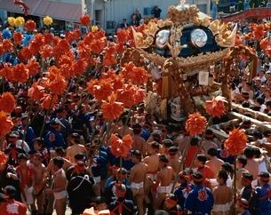 妻鹿のけんか祭りの群集  兵庫県の写真素材 [FYI04077258]