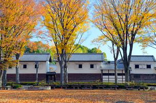 けやき並木と旧田中家住宅の写真素材 [FYI04077368]