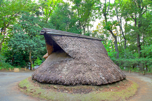 縄文の村 竪穴式住居の写真素材 [FYI04077448]