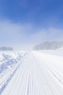 冬の朝の雪原と圧雪路の写真素材 [FYI04077499]