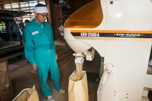 籾摺り機による玄米の袋詰めの写真素材 [FYI04077535]