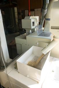 籾摺り 籾摺り機作業の写真素材 [FYI04077541]