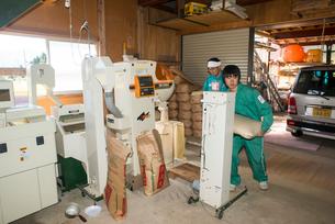 籾摺り機による玄米の袋詰めの写真素材 [FYI04077551]