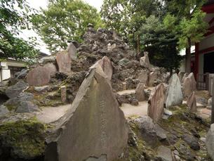 東京都 池袋富士の写真素材 [FYI04078237]