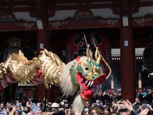 浅草寺 金龍の舞の写真素材 [FYI04078279]