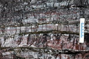 層状チャートの岩石露頭の写真素材 [FYI04078301]