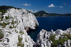 和歌山県 白崎海岸の大規模石灰岩体 -海溝付加体のオリストリス-の写真素材 [FYI04078309]