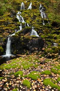 北海道 オンネトー湯の滝 -マンガン酸化物を沈殿する世界最大の滝-の写真素材 [FYI04078311]