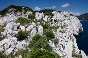 和歌山県 白崎海岸の大規模石灰岩体 -海溝付加体のオリストリス-の写真素材 [FYI04078316]