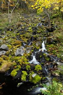 北海道 オンネトー湯の滝 -マンガン酸化物を沈殿する世界最大の滝-の写真素材 [FYI04078320]