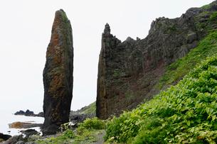 北海道礼文島 地蔵岩 -海岸の侵食地形-の写真素材 [FYI04078323]