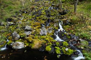 北海道 オンネトー湯の滝 -マンガン酸化物を沈殿する世界最大の滝-の写真素材 [FYI04078325]