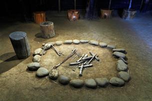 8月夏 三内丸山遺跡 日本最大の縄文遺跡の写真素材 [FYI04078350]