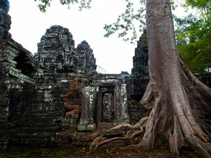 カンボジア シェムリアップ バンテアイ・クディの写真素材 [FYI04078455]