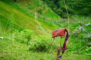 ラオチャイ村民芸品 製作過程の写真素材 [FYI04078485]