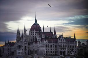 ハンガリー国会議事堂朝景の写真素材 [FYI04078509]