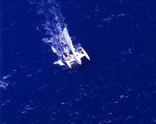 トリマランヨット 空撮の写真素材 [FYI04078552]