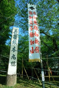 長篠城址 長篠合戦のぼり祭り・紋入り幟の写真素材 [FYI04078978]