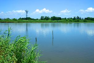 揖斐川と木曽三川公園  の写真素材 [FYI04078982]