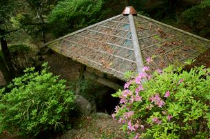 福地城址(芭蕉公園)  本丸の井戸の写真素材 [FYI04078990]