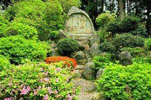 福地城址(芭蕉公園) 本丸の芭蕉の句碑の写真素材 [FYI04079004]