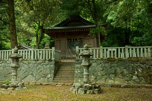 菩提山城址 登城道に建つ白山神社の写真素材 [FYI04079009]