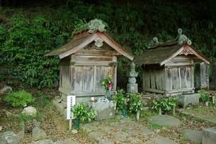 竹中半兵衛重治の墓(左) 禅幢寺の写真素材 [FYI04079010]