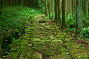 中山道 琵琶峠の石畳・東上り坂の写真素材 [FYI04079024]
