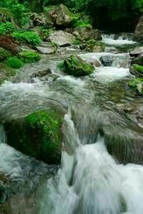 渓流 阿弥陀ヶ滝下流の前谷川の写真素材 [FYI04079156]