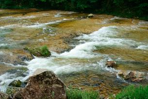 鳳来峡・板敷川(別称)宇連川の写真素材 [FYI04079160]