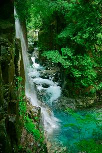 観音滝(左)と東股谷川 付知峡の写真素材 [FYI04079167]