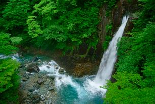 高樽の滝と西股谷川 付知峡 の写真素材 [FYI04079168]