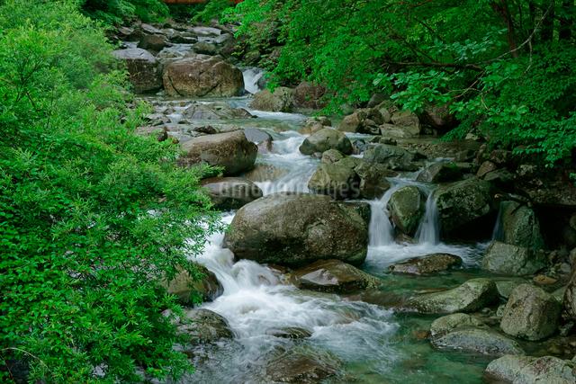 乙女渓谷・加子母川の写真素材 [FYI04079169]