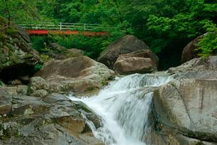 片知渓谷(かたぢけいこく) 千畳岩から上流の滝と岳水橋を望む の写真素材 [FYI04079170]