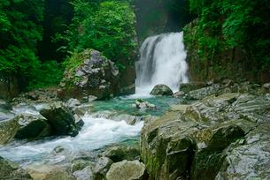 仙樽の滝と東股谷川 付知峡の写真素材 [FYI04079171]
