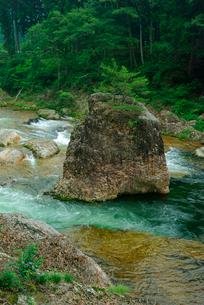 鳳来峡・板敷川(別称)宇連川 たち岩 の写真素材 [FYI04079174]