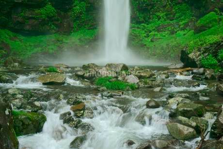 阿弥陀ヶ滝 の写真素材 [FYI04079176]